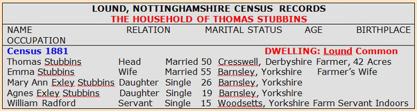 Thomas Stubbins Census Records