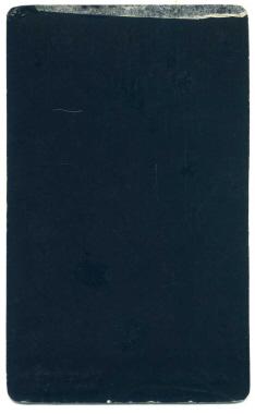 Marcus Guttenberg carte de visite photograph 28 (verso)